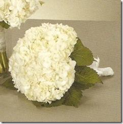 Hydrangea-Bouquet-297x300